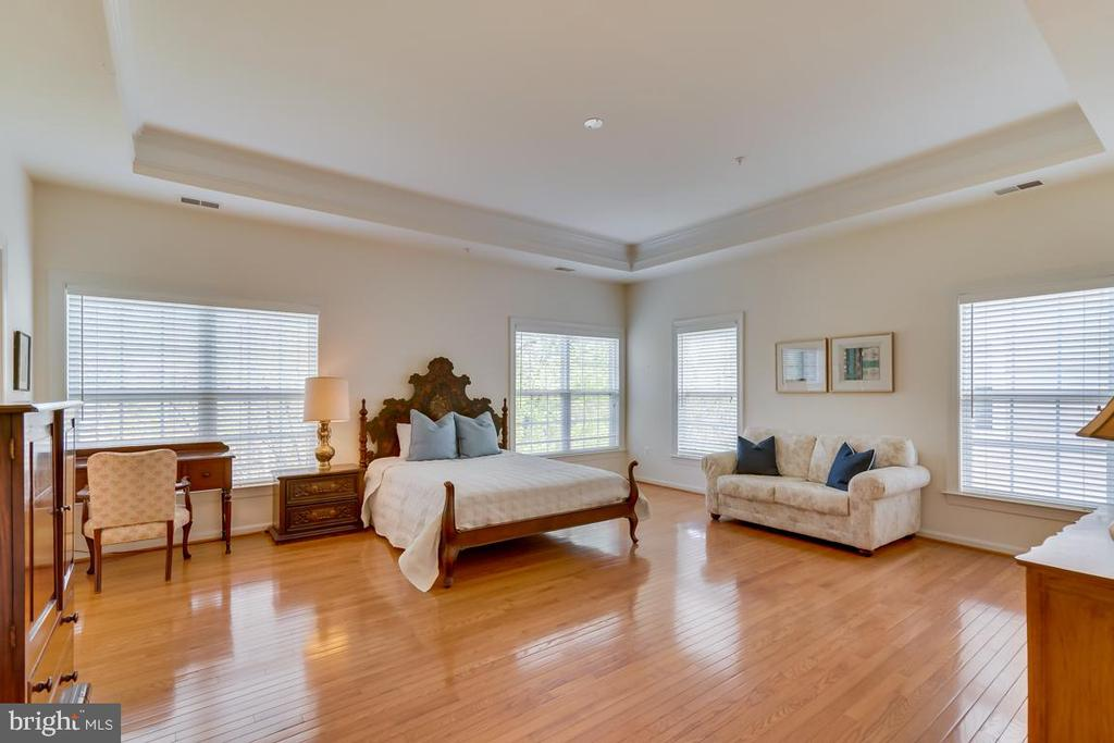 Master Suite With Tray Ceiling - 1869 AMBERWOOD MANOR CT, VIENNA