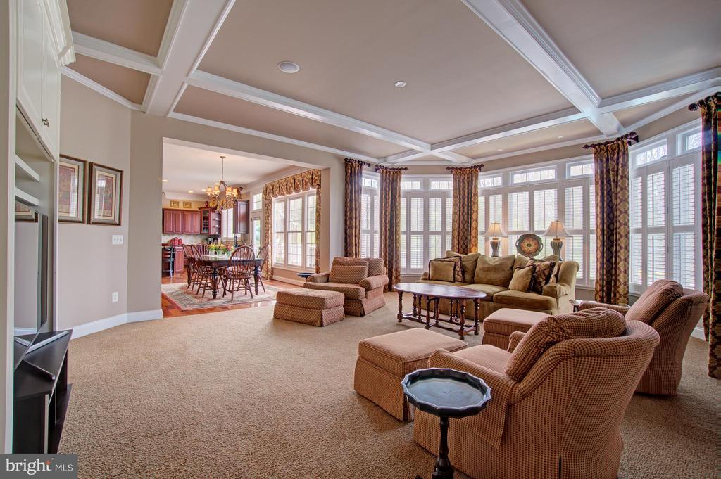Coffered Ceilings in the Family Room - 36158 SILCOTT MEADOW PL, PURCELLVILLE