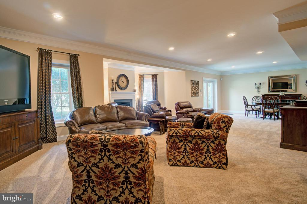 Rec Room - 36158 SILCOTT MEADOW PL, PURCELLVILLE