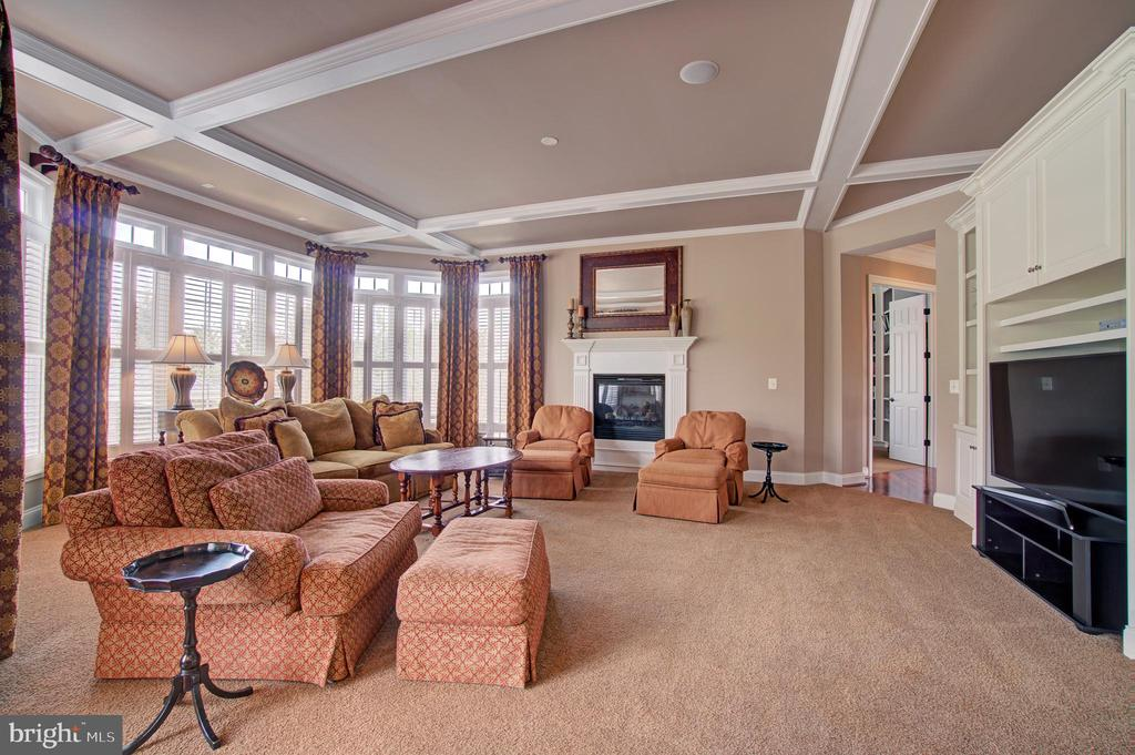 Open & Bright Family Rm w/ Wood Burning Fireplace - 36158 SILCOTT MEADOW PL, PURCELLVILLE