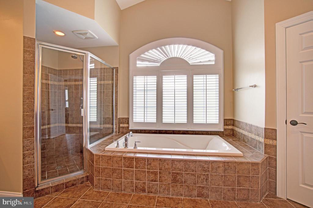 Separate Shower & Soaking Tub - 36158 SILCOTT MEADOW PL, PURCELLVILLE