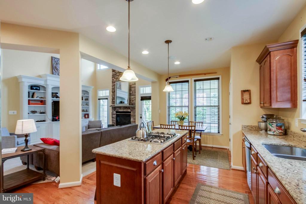 Bright open kitchen! - 42953 THORNBLADE CIR, BROADLANDS