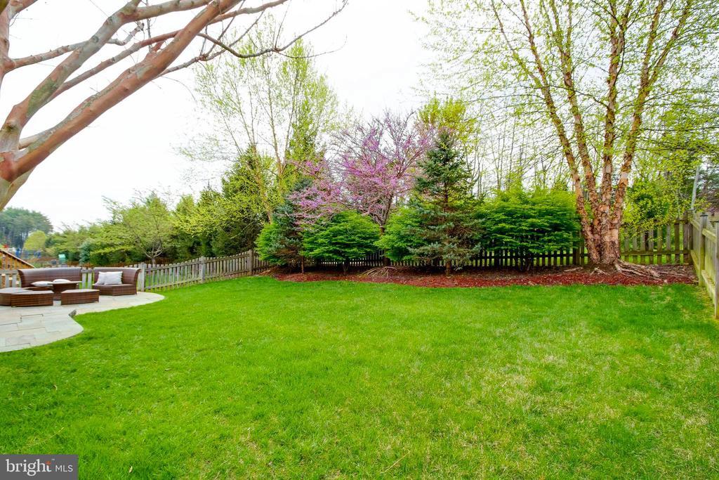 Fenced in backyard! - 42953 THORNBLADE CIR, BROADLANDS