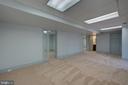 Lower Level Family Room - 12126 MERRICKS CT, MONROVIA