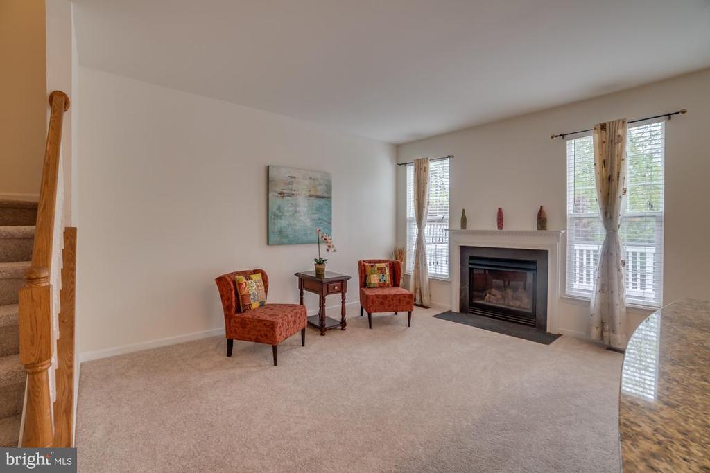 Family Room with Cozy Fireplace, Deep windows - 20129 PRAIRIE DUNES TER, ASHBURN