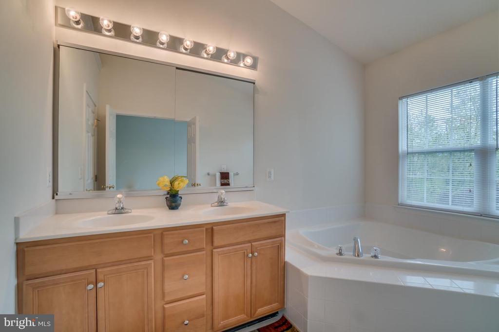 Master Bathroom Soaking Tub - 20129 PRAIRIE DUNES TER, ASHBURN