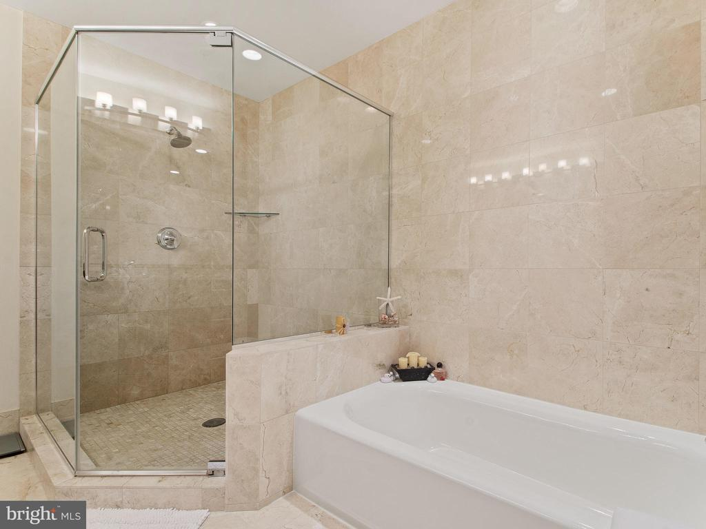 Large walk-in Shower with separate Tub - 8220 CRESTWOOD HEIGHTS DR #1814, MCLEAN