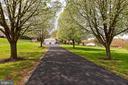 TREE LINED DRIVEWAY - 7396 HILLSIDE TURN, MOUNT AIRY