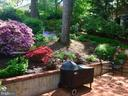 Back Yard - 6025 GROVE DR, ALEXANDRIA