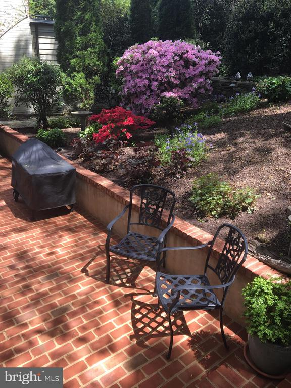 Patio/Yard - 6025 GROVE DR, ALEXANDRIA