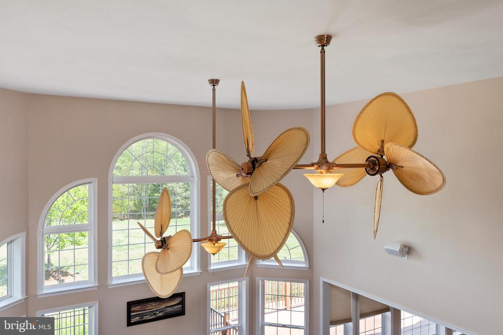 Eye-Catching Ceiling Fans - 12515 SINGLE OAK RD, FREDERICKSBURG