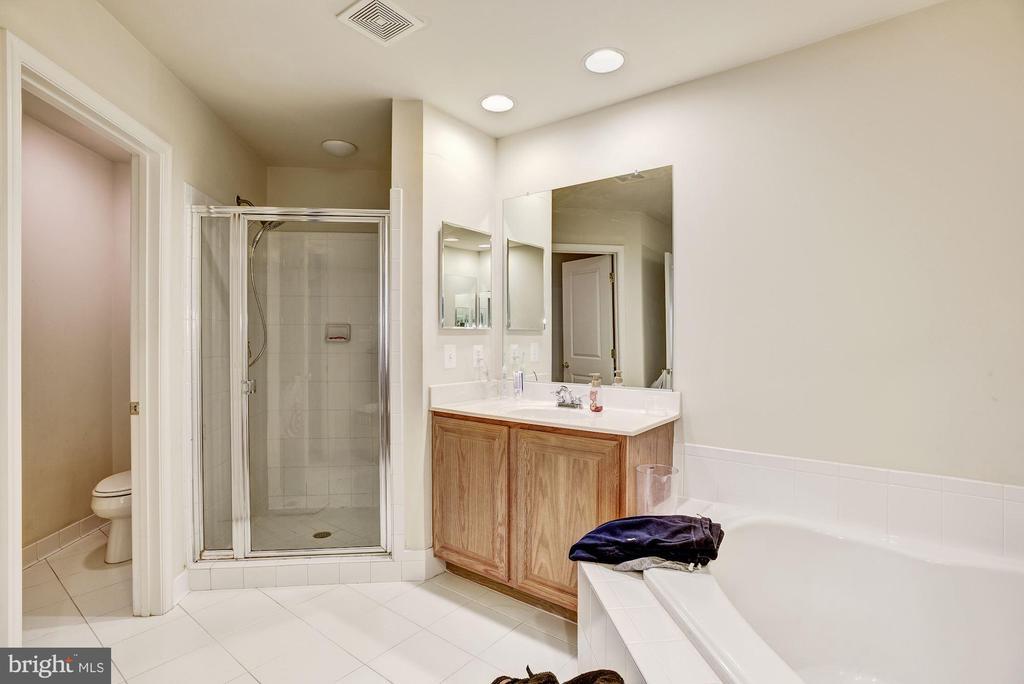 Master Bathroom w/ 2 vanities - 23228 WASHBURN TER, BRAMBLETON