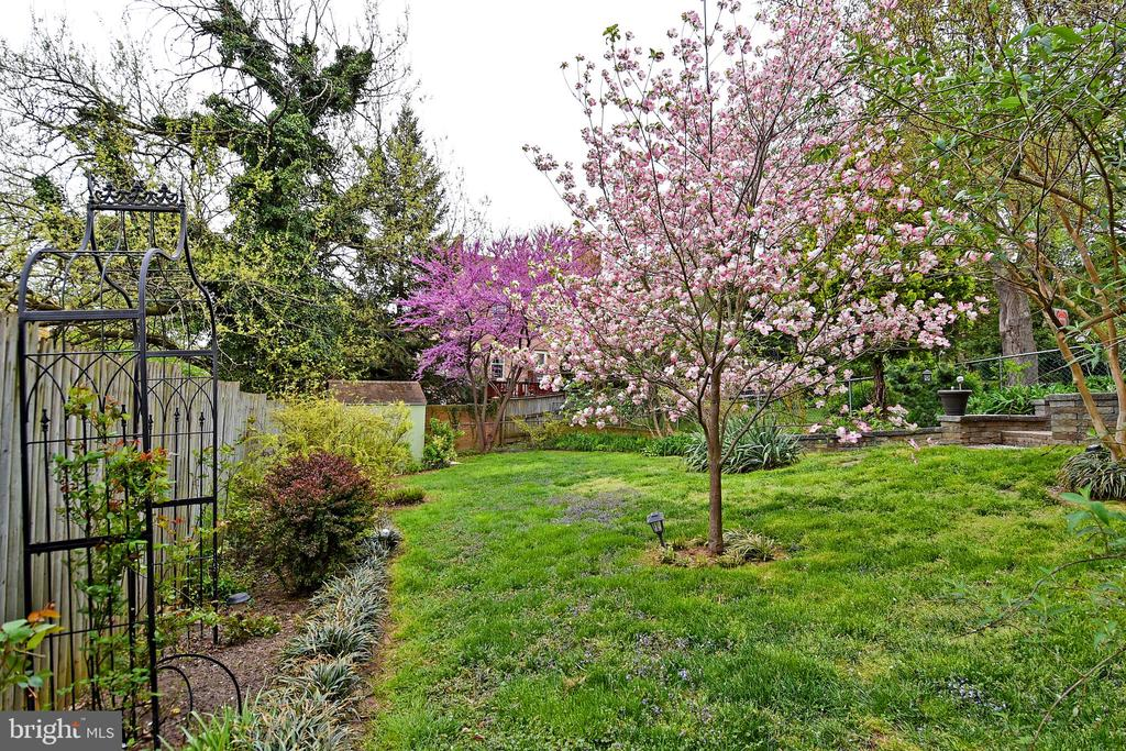 Pretty back yard - 2446 N JEFFERSON ST, ARLINGTON