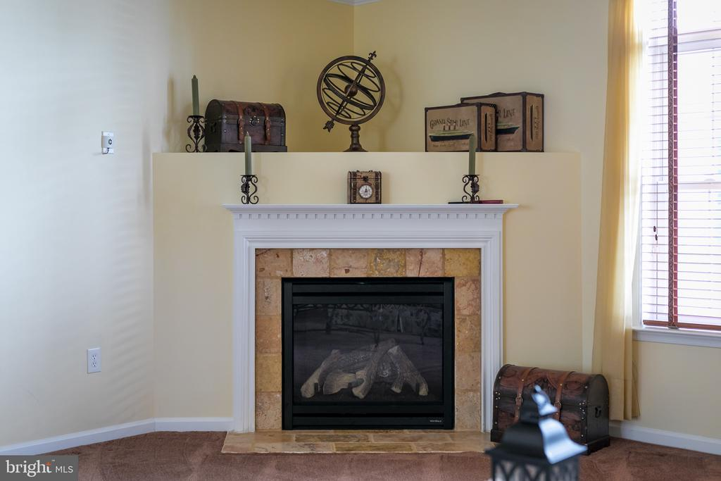 Gas Fireplace with Italian Marble Surround - 20579 CRESCENT POINTE PL, ASHBURN