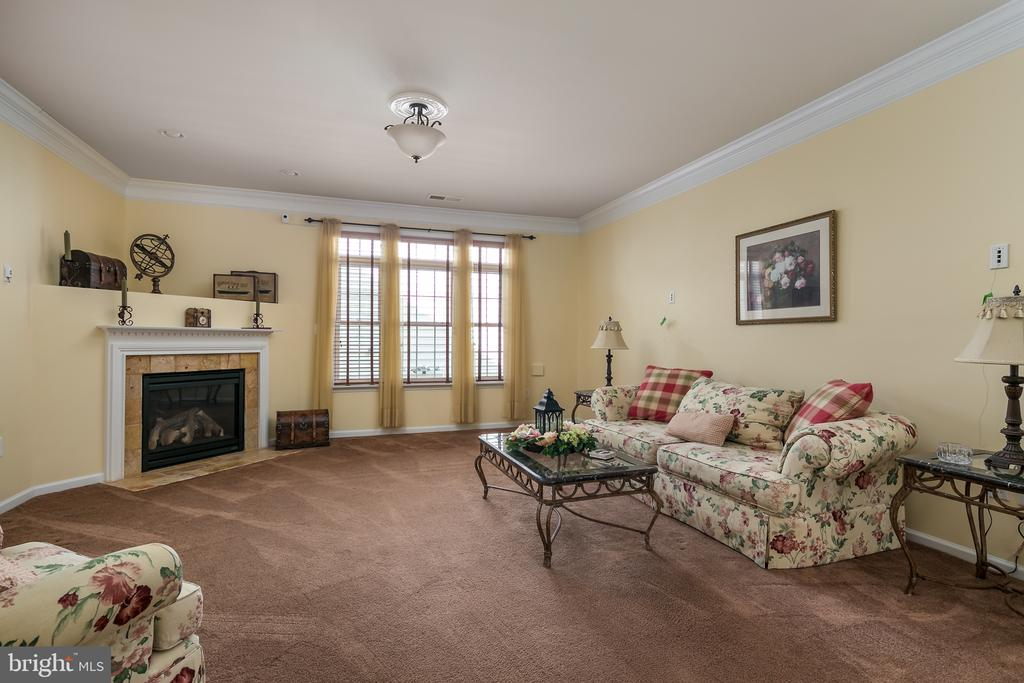 Great Room/Living Room w/Crown Molding - 20579 CRESCENT POINTE PL, ASHBURN