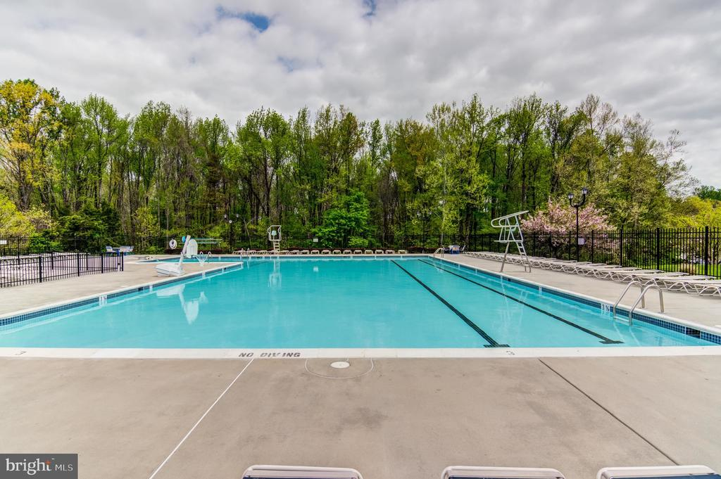 Community Pool - 14522 BLACK HORSE CT, CENTREVILLE