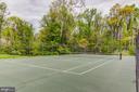 Community Tennis Court - 14522 BLACK HORSE CT, CENTREVILLE