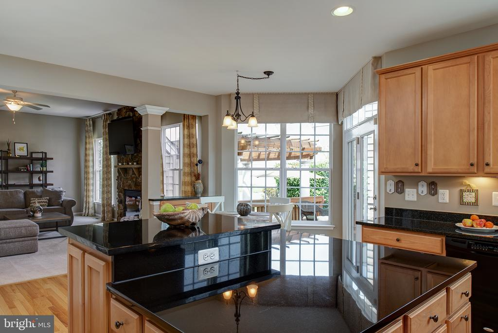 Under Cabinet Lighting and Hardwood Floors - 43168 ALEX ST, LEESBURG