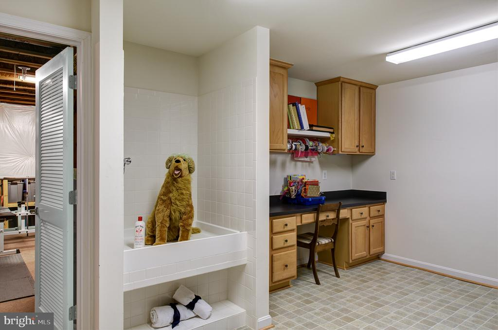 Basement Craft Room w Dog Washing Station - 43168 ALEX ST, LEESBURG