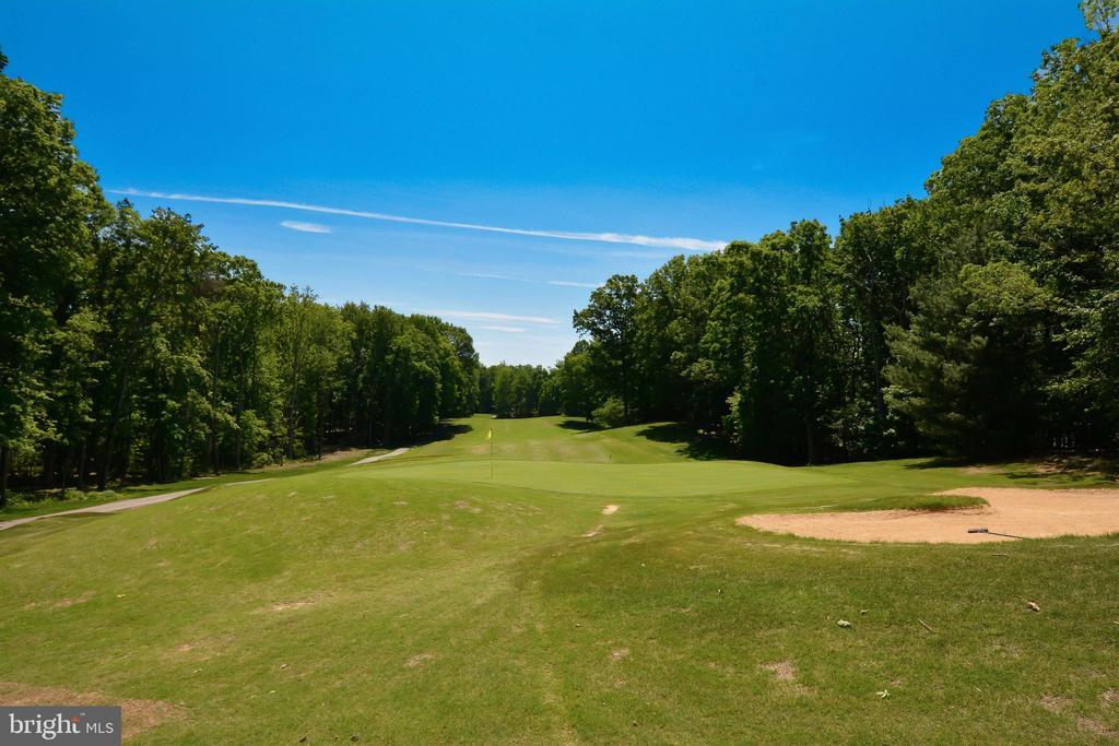 Community 18 Hole PGA Golf Course - 215 WAKEFIELD DR, LOCUST GROVE
