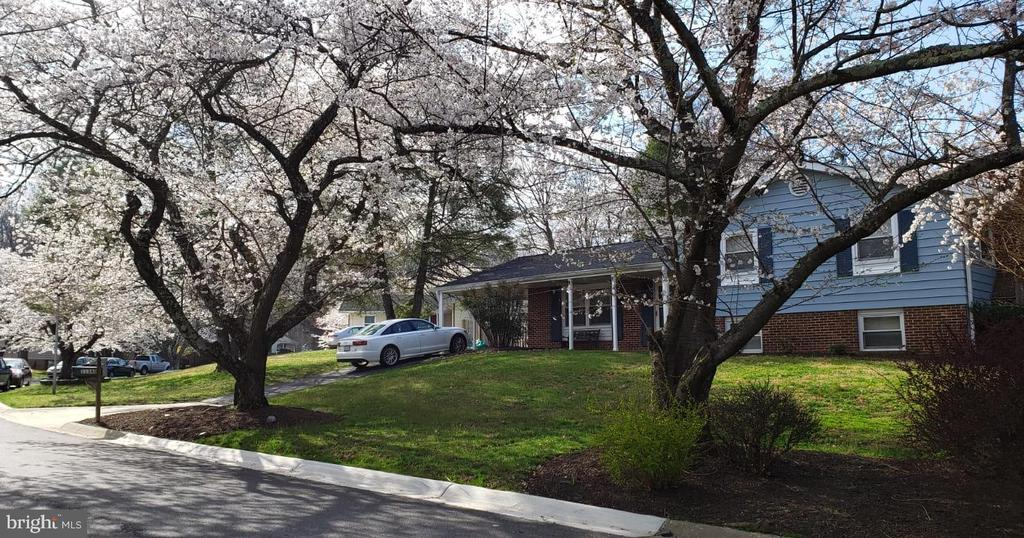 Spring on Rambling Road - 11340 RAMBLING RD, GAITHERSBURG