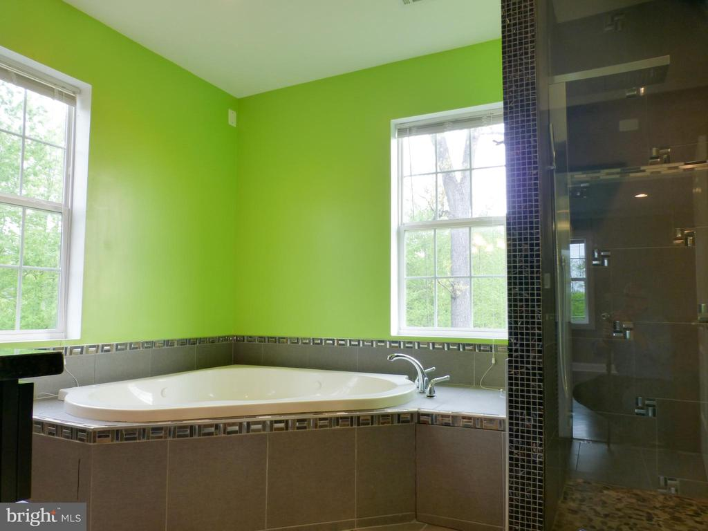 Master Soaking Tub with Window Natural Light - 2621 STENHOUSE PL, DUNN LORING