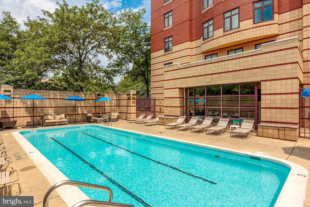Community pool - 2400 CLARENDON BLVD #803, ARLINGTON