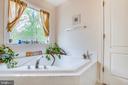 Master bath features corner soaking tub - 15001 DOVEY RD, SPOTSYLVANIA