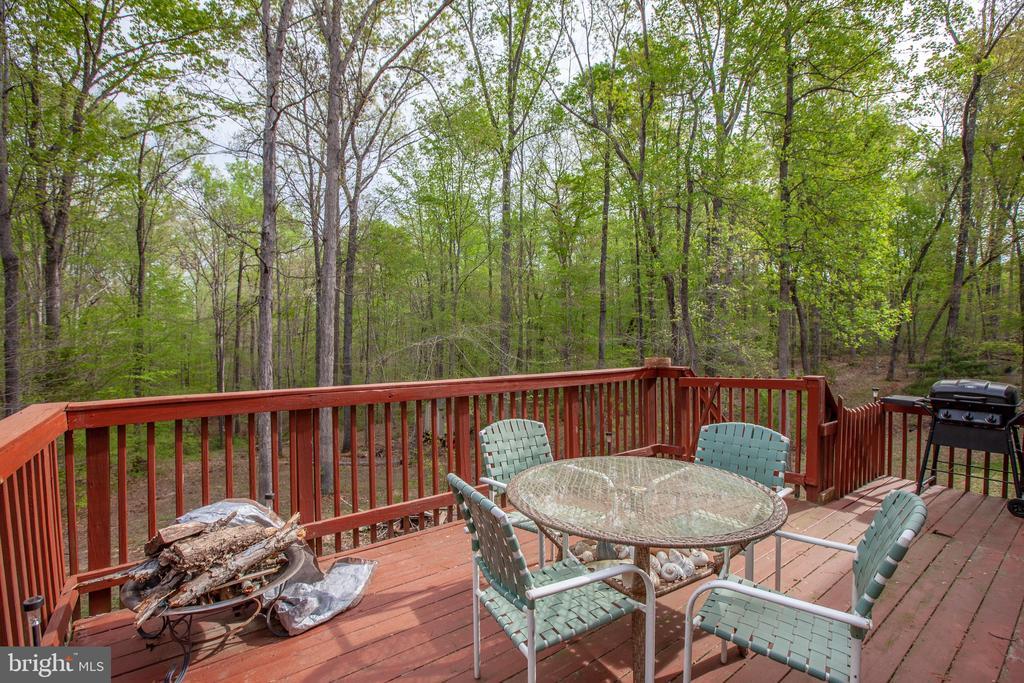 Wooded & serene backyard w/ creek running through - 15001 DOVEY RD, SPOTSYLVANIA