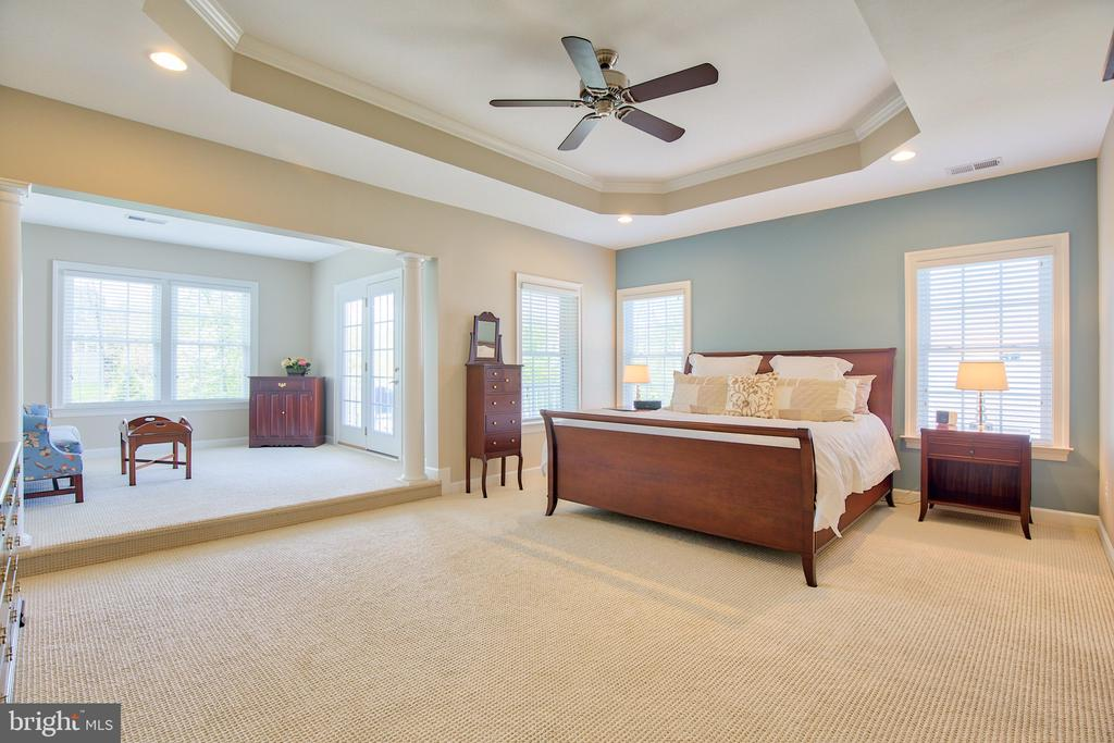 Master Suite - 41656 REVIVAL DR, ASHBURN