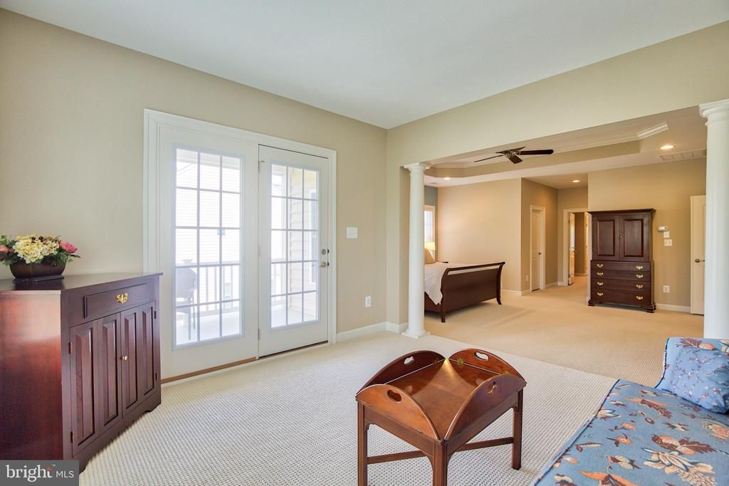 Sitting room in master suite with walkout porch - 41656 REVIVAL DR, ASHBURN
