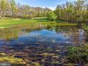 Stocked pond, bring your fishing rods! - 43470 EVANS POND RD, LEESBURG