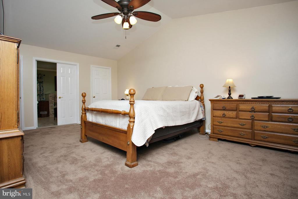 Master Bedroom - 29 BLOSSOM WOOD CT, STAFFORD
