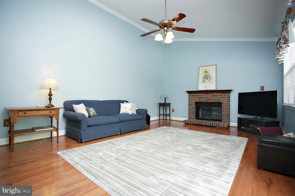 Vaulted Ceiling Family Room with Fireplace - 29 BLOSSOM WOOD CT, STAFFORD