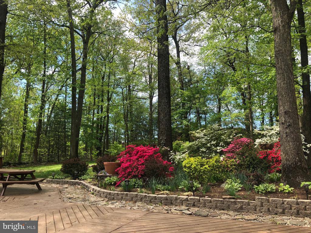 Brick patio and lovely landscaping - 9327 TOVITO DR, FAIRFAX