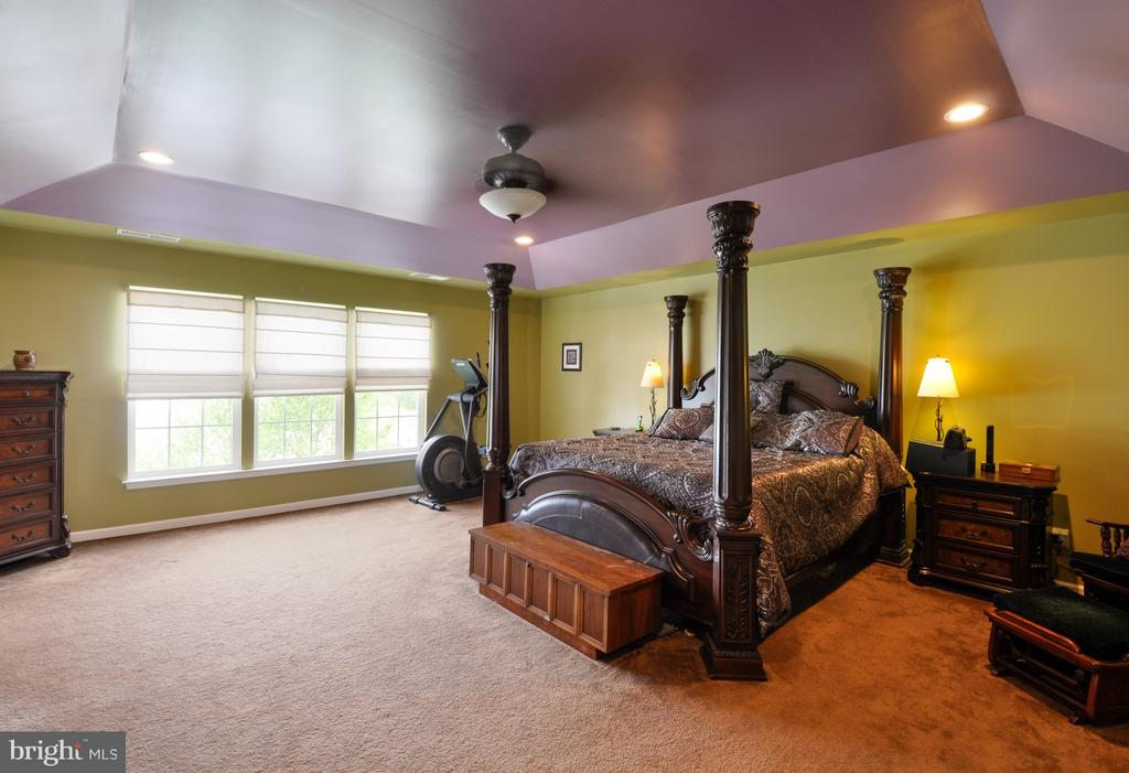 Master bedroom with Tray ceiling - 61 CHAPS LN, FREDERICKSBURG