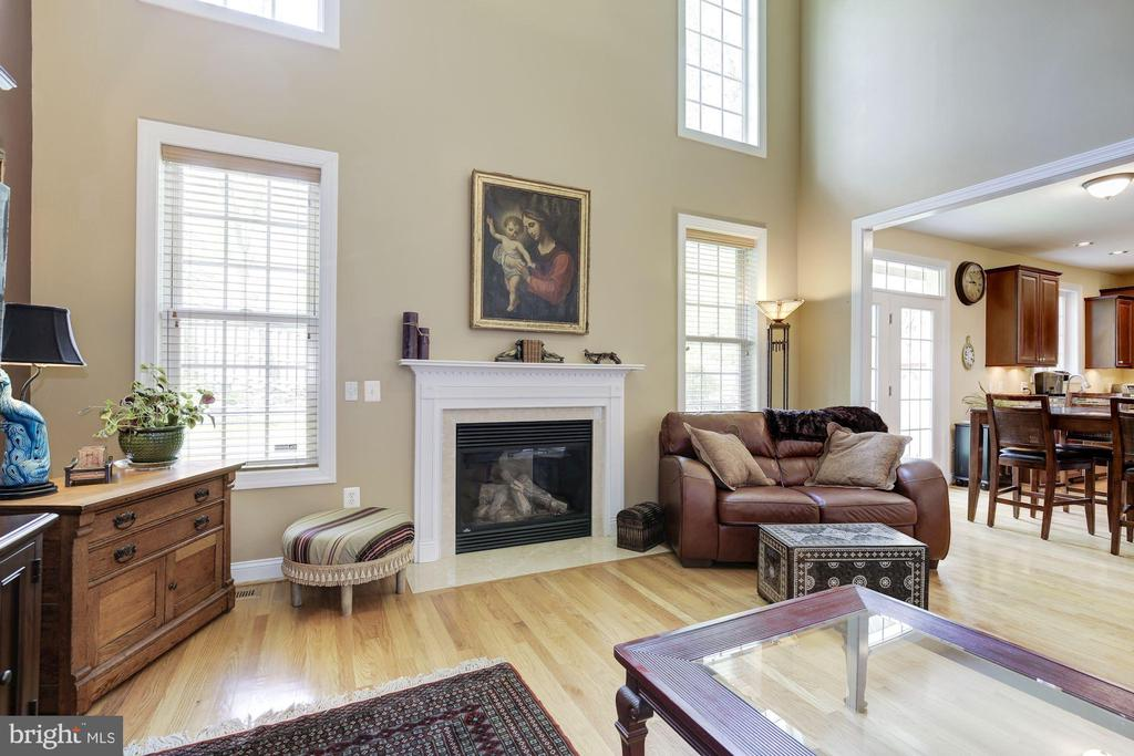 Great room with fireplace. - 7318 EDMONSTON RD, COLLEGE PARK