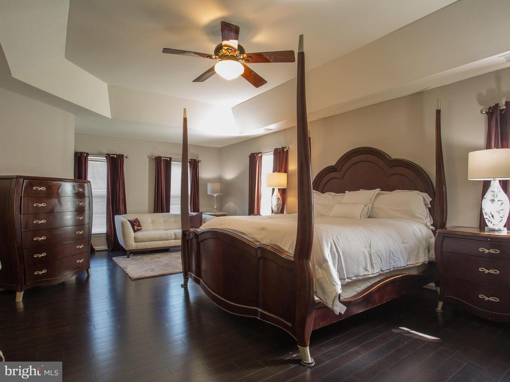 Master Bedroom - 325 SENATE CT, HERNDON