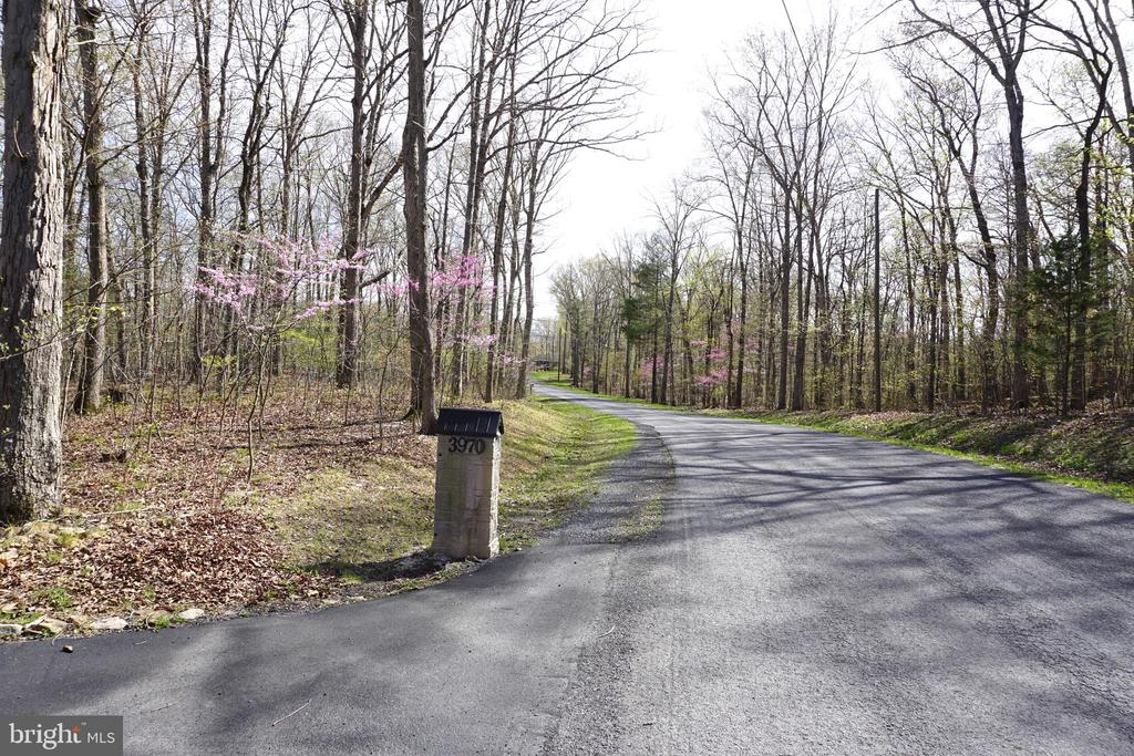 Road leading up to driveway - 3970 PANHANDLE RD, FRONT ROYAL