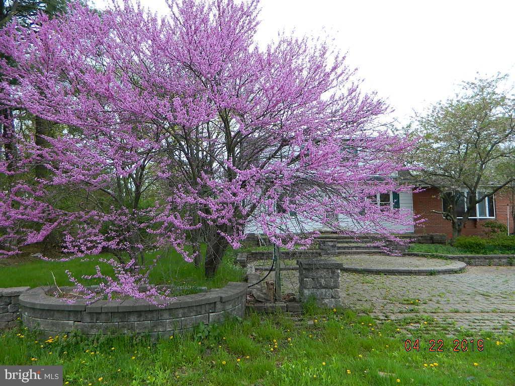 Property per Vendita alle ore Skillman, New Jersey 08558 Stati Uniti