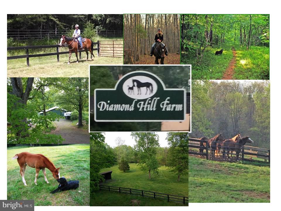 8326  DIAMOND HILL ROAD, Fauquier County, Virginia