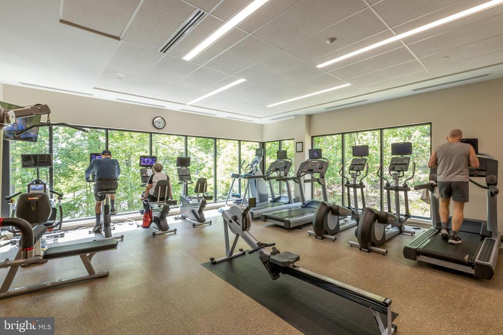 Fitness center - 5903 MOUNT EAGLE DR #803, ALEXANDRIA