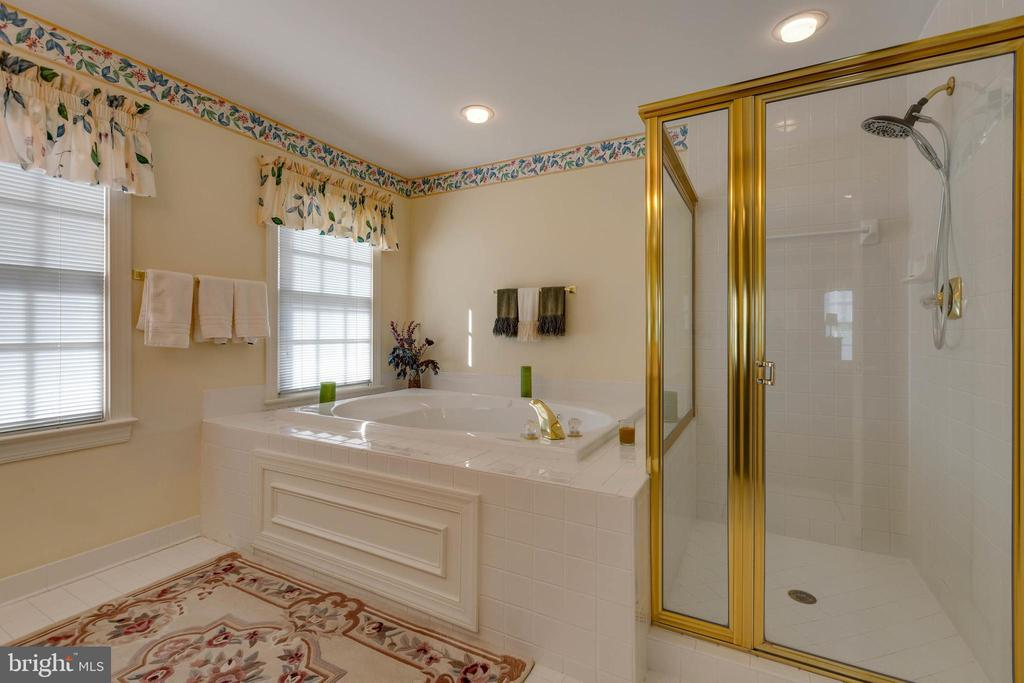 2nd Master Bath - 8237 GALLERY CT, MONTGOMERY VILLAGE