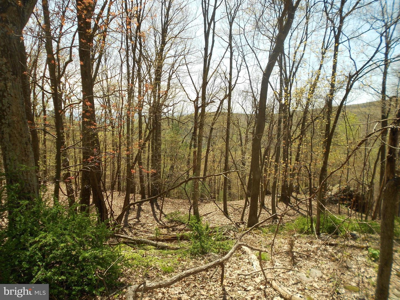 Land for Sale at Orrtanna, Pennsylvania 17353 United States