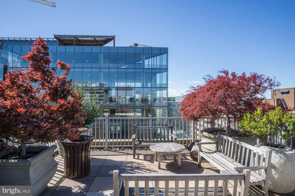 Rooftop Great for Entertaining - 1301 20TH ST NW #211, WASHINGTON