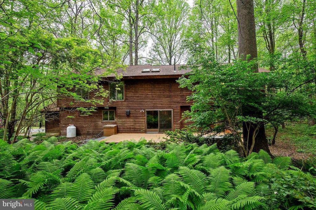 Gorgeous woodland setting - 11220 HANDLEBAR RD, RESTON