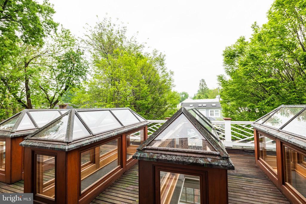 Mater bedroom deck with custom skylights to sunrm. - 16 CORNWALL ST NE, LEESBURG