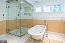 Master bath with steam shower. - 16 CORNWALL ST NE, LEESBURG