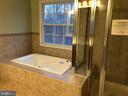 Master tub and tiled shower - 11810 HICKORY CREEK DR, FREDERICKSBURG