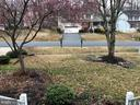 Early Spring view out front - 11810 HICKORY CREEK DR, FREDERICKSBURG